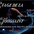 Stage de la Toussaint GAF (filles) pour les groupes Elites, Perfectionnement, Avenir, Prépa 2012, D5, Détection 1 & 2.